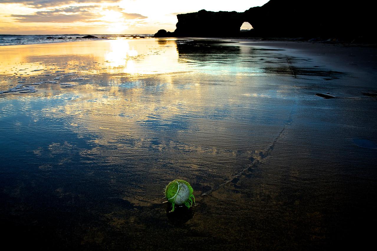 A Dog's Ball #2.  Santa Cruz Beach
