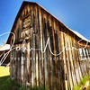 Bodie Leaning House