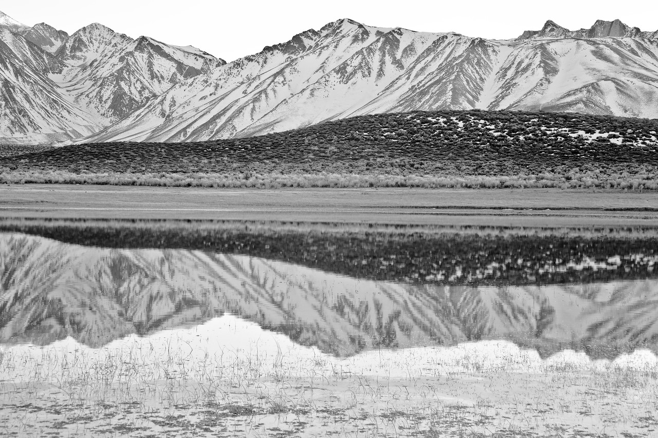 Colorless Reflection