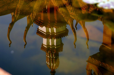 Reflection  of National Museum in lily pond