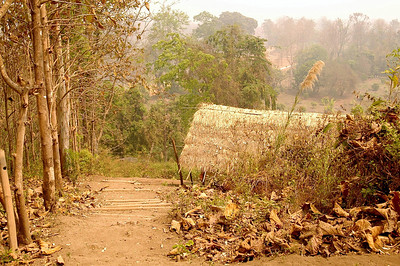Padaung Village 1