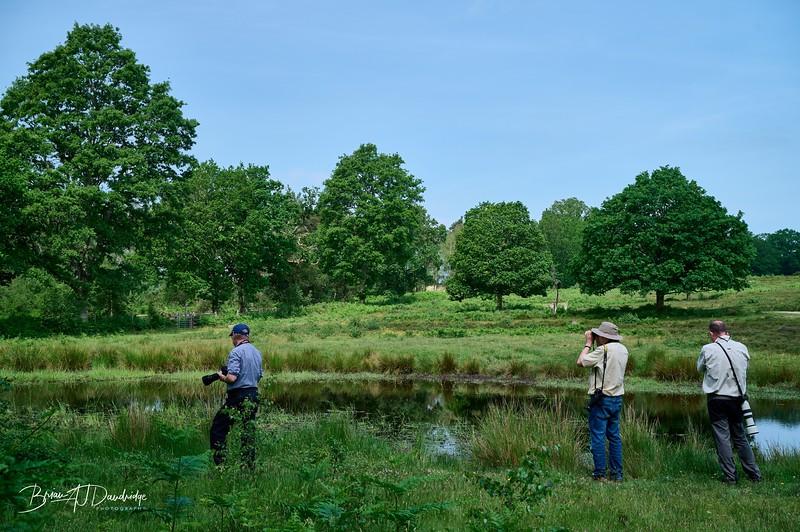 Burton Pond MSCC-1771 - 10-00 am