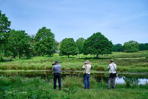 Burton Pond MSCC-1770 - 9-59 am