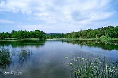 Burton Pond MSCC-1765 - 9-19 am