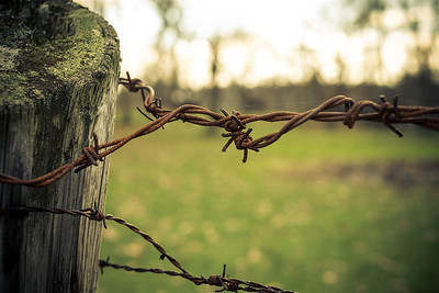 Barbed Fuji X-Pro1 with 35mm f/1.4