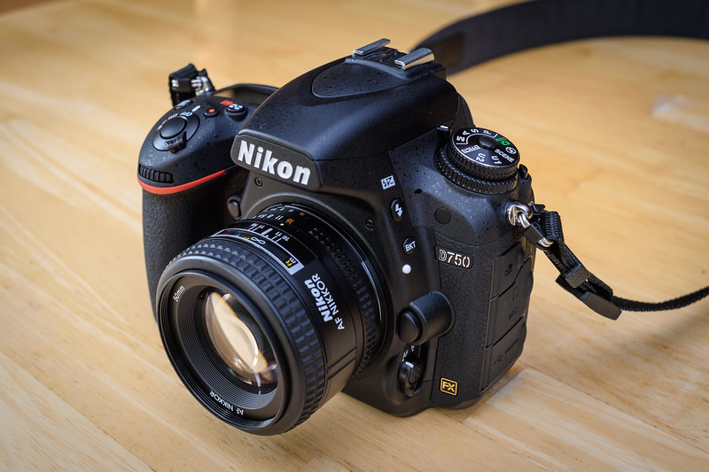 Nikon D750 Sample Images