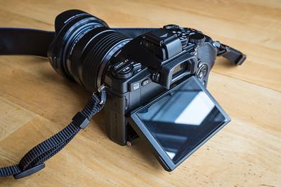 Olympus OM-D E-M1 with Olympus 12-40mm f/2.8 Pro Lens.