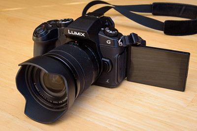 Panasonic G85 with 12-60mm f/3.5-5.6 Lens