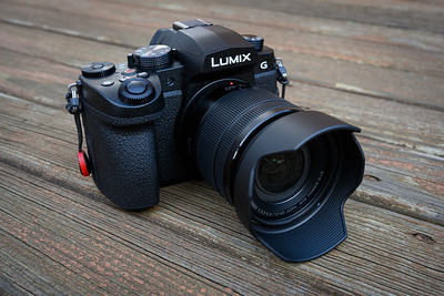 Panasonic Lumix G95 with 12-60mm Kit Lens