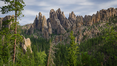 Custer State Park - SD