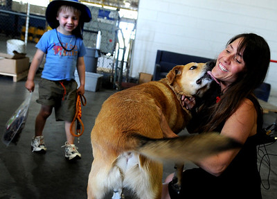 Samantha Squires, of Boulder, and her son Darian, 4, are reunited with their long lost dog Buster Brown at Denver International Airport on Friday, June 3. The dog was found in California and flown back to Denver to be with it's owners. For a video of the reunion go to www.dailycamera.com Jeremy Papasso/ Camera