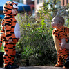 "1031MASQU16.jpg Jayden Beyer (left), 23 months, and Cooper Zachritz (right), 6 months, check out each others tiger costumes during the Munchkin Masquerade on the Pearl Street Mall in Boulder, Colorado October 31, 2011.  CAMERA/Mark Leffingwell<br /> <br /> Watch video of the Munchkin Masquerade at  <a href=""http://www.dailycamera.com"">http://www.dailycamera.com</a>"