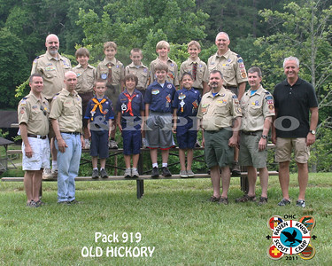 pack 919