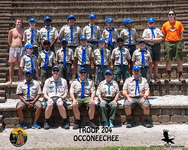 204 occ