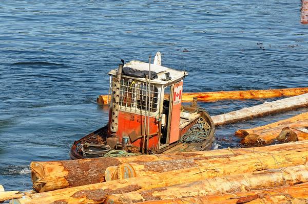 les petits bateaux de Beaver Cove