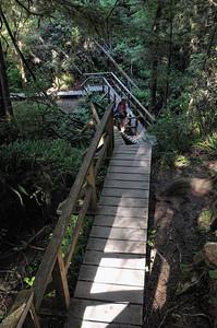 des ponts en bois permettent de randonner agréablement.