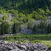 River flowing in forest, Frank Slide, Kananaskis Country, Southern Alberta, Alberta, Canada