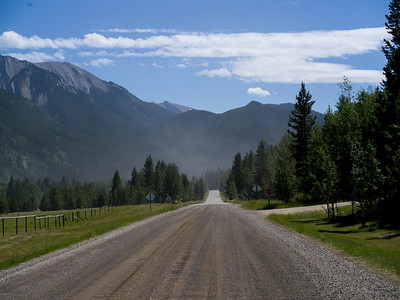 Road passing through forest, Kananaskis Country, Southern Alberta, Alberta, Canada
