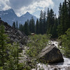 Stream flowing in forest, Moraine Lake, Banff National Park, Alberta, Canada