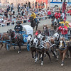 Chuckwagons line-up or racing during Calgary Stampede, Calgary, Alberta, Canada
