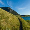 Grass on hillside, Waterton Lakes National Park, Alberta, Canada