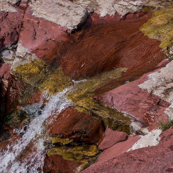 Water flowing through rocks, Red Rock Canyon Parkway, Waterton Lakes National Park, Alberta, Canada