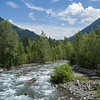 River flowing through forest, Slocan Park, British Columbia, Canada
