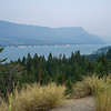 Trees at lakeshore, Edgewater, British Columbia, Canada