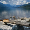 Driftwood on the shore of lake, Kootenay Lake, Silverton, British Columbia, Canada