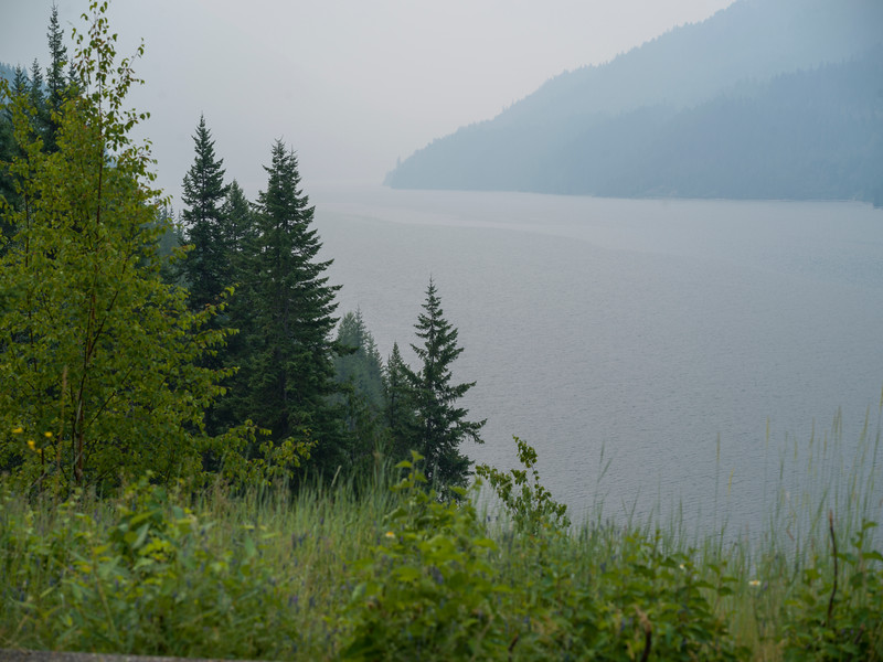 Trees at lakeshore, Kootenay Lake, British Columbia, Canada