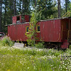 Abandoned Locomotive Caboose in forest, Cranbrook, British Columbia, Canada