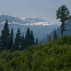 Trees with snow covered mountain range in the background, Revelstoke, British Columbia, Canada