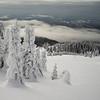 Snow covered trees, Thompson-Nicola Regional District, Sun Peaks Resort, Sun Peaks, British Columbia, Canada