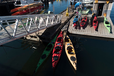 Kayaks at Inner Harbour, Victoria, Vancouver Island, British Columbia, Canada