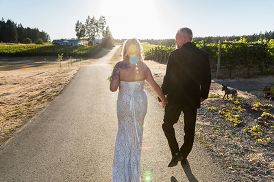 Rear view of newlywed couple walking on pathway, Vancouver Island, British Columbia, Canada