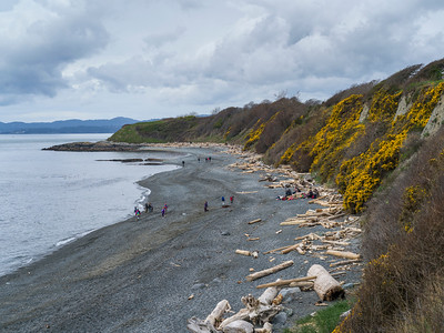 High angle view of tourists on Spiral Beach, Victoria, British Columbia, Canada