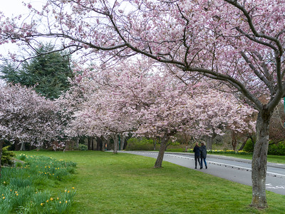 Two women walking in Beacon Hill Park, Fairfield, Victoria, British Columbia, Canada