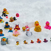 Assorted  sized rubber ducks on snow, Whistler, British Columbia, Canada