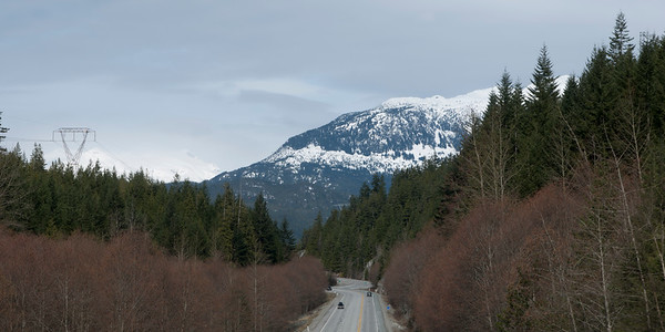 Road through forest, Whistler, British Columbia, Canada