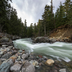 River flowing in a forest, Whistler, British Columbia, Canada