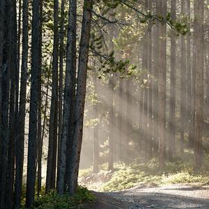 Grassi Lake Trail, Kananaskis Country, Alberta, Canada