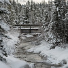 Stream flowing in snowy forest, Lake Louise, Banff National Park, Alberta, Canada