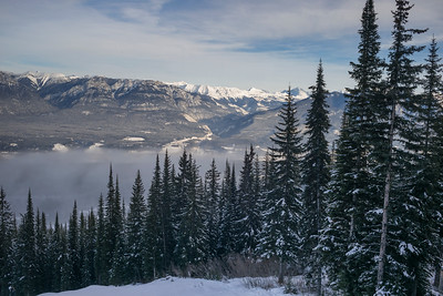 Snow covered trees with mountains in winter,  Kicking Horse Mountain Resort, Golden, British Columbia, Canada