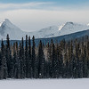 Snow covered trees and mountain in winter, Emerald Lake, Field, British Columbia, Canada
