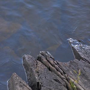 lake12526.jpg