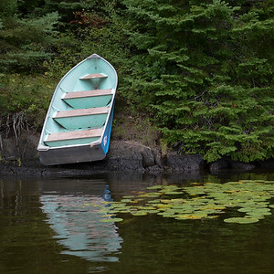 lake12519.jpg