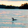 lake15021