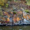 Plants growing between rocks, Kenora, Lake of The Woods, Ontario, Canada