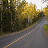 Road passing through a forest, Kenora, Lake of the Woods, Ontario, Canada