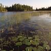 lakesn000174.jpg